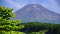 林道富士山麓線からの富士山-6058103 40368904