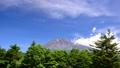 水ヶ塚からの富士山-6058216 40368906