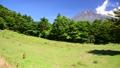 水ヶ塚からの富士山と野生のシカ-6058221 40368908
