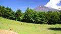 mountain fuji mt 40368909