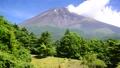 水ヶ塚からの富士山-6058251 40368910
