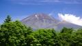 水ヶ塚からの富士山-6058370 40368913
