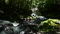 自然 風景 川の動画 40442170