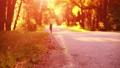 Sport man running at asphalt road. Rural city park. Green tree forest and sun rays on horizon. 40501346