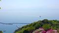 春の美保関 関の五本松公園のツツジと船 40540082