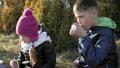 children, outdoor, kid 40567558