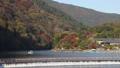 11月秋 紅葉の嵐山の朝  京都の秋景色 40620444