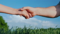 A man farmer shakes hands with a woman. Against the background of a green wheat field and blue sky 40660486