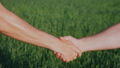 Friendly handshake of two male hands. Against the background of a green wheat field 40660498