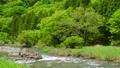 แม่น้ำทากาชิกะว่าสีเขียวสด 40674903