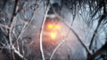 stone screaming head in fog night forest. Fear and horror. Mistyc concept of halloween. Realistic 40696032
