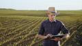 農夫 農家 農民の動画 40719379
