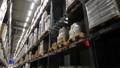 Large warehouse logistics terminal 40729293