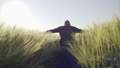 Adorable men touching green ears of wheat on field - slow motion. 40760547