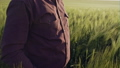Close up portrait of smiling man standing in green wheat field on sunset and looking at the camera - 40760553