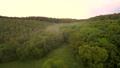 forest, landscape, aerial 40807230