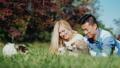 couple, park, pet 40842898