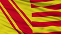 Closeup Beauraing city flag, Belgium 40880423