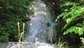大滝河川遊歩道の小さな滝(鬼怒川温泉・大滝河川遊歩道) 40881955