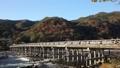 togetsu bridge, maple, yellow leafe 40927984