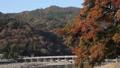 11月秋 紅葉の嵐山渡月橋の朝  京都の秋景色 40927987