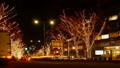 東京·聖誕節·原宿表參道·時間流逝·放大 40970240