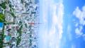 東京 東京タワー 街並の動画 41018403