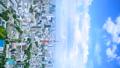 東京 東京タワー 街並の動画 41018404