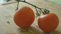 Tomatoes and Worms 41042131