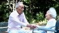 老夫婦 シニア 夫婦の動画 41092891