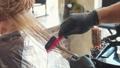 머리, 머리카락, 모발 41155269
