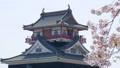 清洲城と桜 左にスライド 41240917