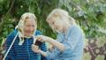 祖母 年长 老年人 41320641