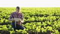 農夫 農家 農民の動画 41473816