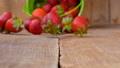 Fresh strawberries falling from bucket  41502300