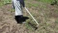 草刈り 41520086