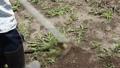草刈り 41520087