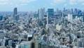 東京 城市 市容 41525126