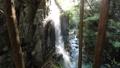 付知峡 観音滝の光芒 41578491