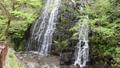 龍双ヶ滝 41578492