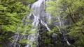 龍双ヶ滝 41578493