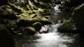 골짜기, 강, 계곡 41649990