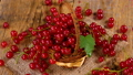 Red currant berries in basket rotating on wood 41703772