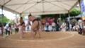 わんぱく相撲 子供相撲 こども相撲 力士 相撲 相撲取り 土俵 まわし ちょんまげ イベント 41792405