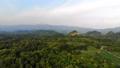 ป่า,ภาพถ่ายทางอากาศ,อากาศ 41831944
