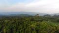 ป่า,ภาพถ่ายทางอากาศ,อากาศ 41831948