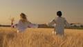 field, female, wheat 41962912