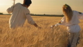 field, female, wheat 41962920