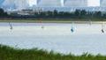 กีฬา,งานอดิเรก,แม่น้ำ 41964159