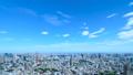 東京・タイムラプス・定番風景・初夏の爽やかな青空と緑が点在する都心全景・ワイド・ティルトダウン 41964390